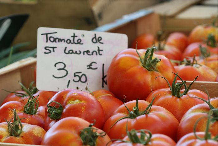 tomato-d-st-laurent